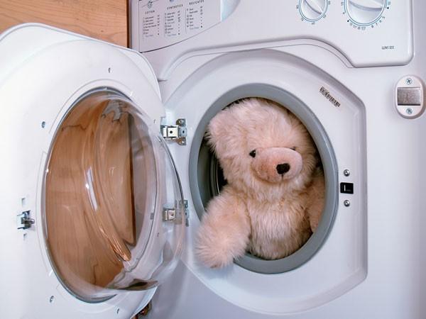 Giặt gấu bông, thú nhồi bông